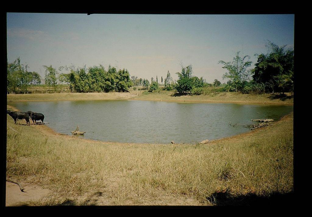 東広島市のため池