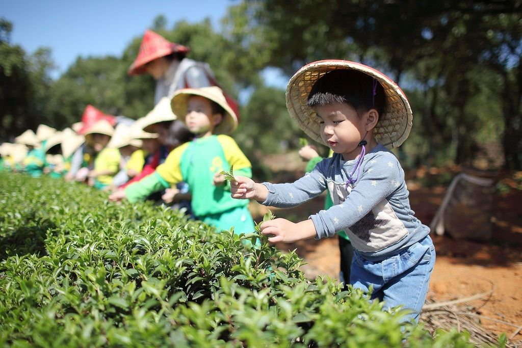 東広島市の待機児童解消のための対策本部が設置される見通し